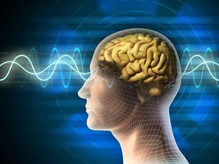 دانلود پایان نامه کارشناسی روانشناسی بررسی و مقایسه میزان هیجان خواهی در پسران و دختران نابینا و معلول حرکتی